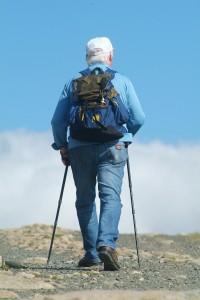 nordic-walking-296270_1920